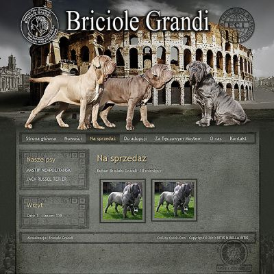 mastino-briciolegrandi.pl