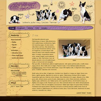 bostonterrier.com.pl